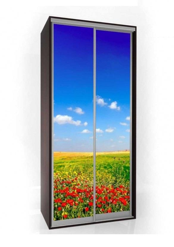 Шкаф-купе Мебелайн-1 с фотопечатью Цветы радиусный шкаф купе мебелайн 7