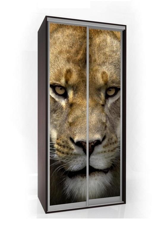 Шкаф-купе Мебелайн-1 с фотопечатью Животные радиусный шкаф купе мебелайн 7