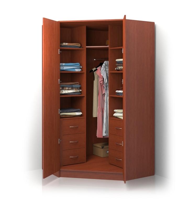 Шкаф распашной Alisa-3