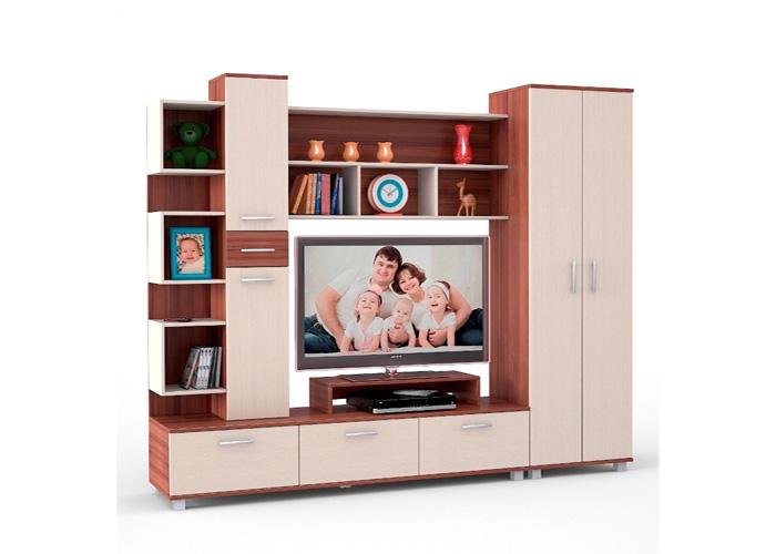 Гостиная Омега ТВ-10