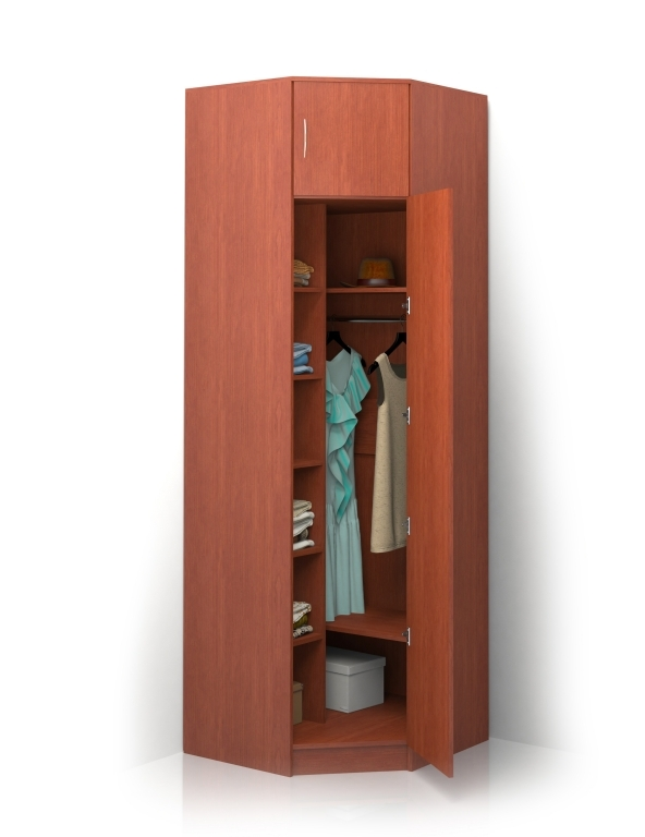 Шкаф распашной Alisa-11
