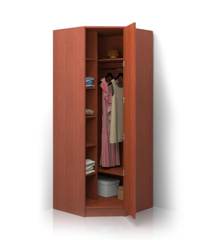 Шкаф распашной Alisa-1